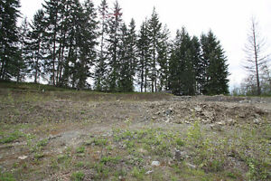 Bare Land Strata Lots in Park Like Setting - Salmon Arm