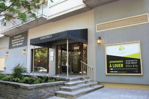 Lease transfer for 3 1/2 apartment in McGill Ghetto