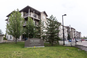 Convenient North Side 2Bed 2Bath Condo