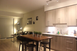 Downtown One-bed condo $2499