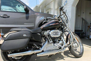 2005 harley davidson 1200 cc GREAT CONDITION