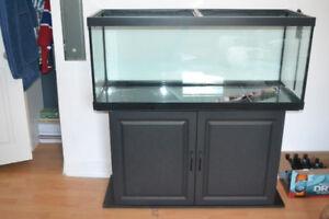 aquarium avec meuble [ Neuve, presque pas servi ]