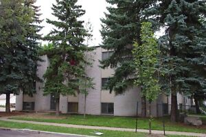 South Side Suites Near Whyte and University Available Now!