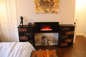 Beautiful Newly-Renovated 2 Bed 2 Bath Downtown House-July 1