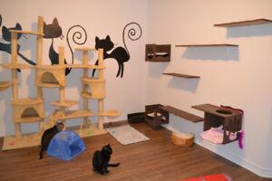pension pour chats sans cage litière fournit canilin