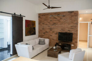 Gladys' spacious Loft - Havana Cuba - directly on Malecon