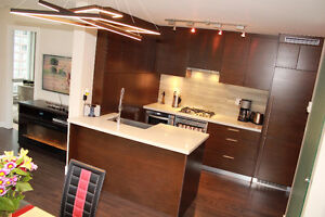 Luxury 2bd and 2 bath apartment in downtown vancouver