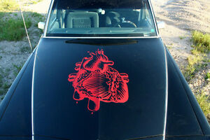 Arrive at your event & get photos in a Custom Hearse!