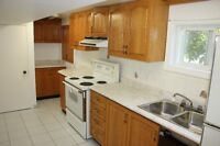 basement apartment near Tomken & Rthburn available  Sept.1