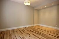 Beautiful Duplex- Completely Renovated One bedroom for Rent