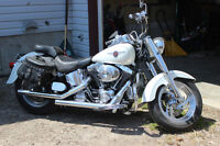 Harley Davidson FatBoy- Summer is Coming