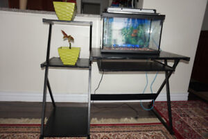 Computer table and Fish tank