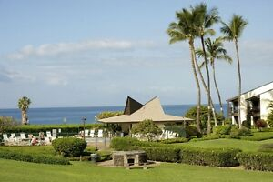 Maui...Cute 1 Bedroom Ground Floor Condo in south Kihei