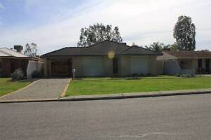 Fully Furnished House 3x2 (Kenwick) Kenwick Gosnells Area Preview