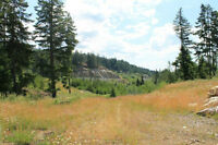 8.52 acres near Victoria, BC (only 50K down for financing)