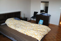 Rooms for rent Browns Line/Lakeshore available now&for January