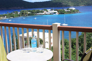 Wonderful condo for rent in front of the ocean at St Thomas USVI
