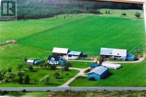 Farm on 150 acres with a 3 bedroom house, equipment included!!