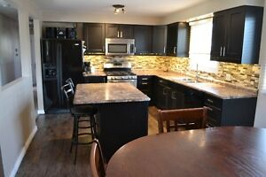 Newly Renovated House - Waterford
