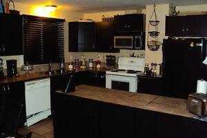 A spacious full Basement in a Shared Home Gatineau Ottawa / Gatineau Area image 6