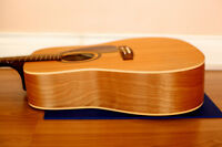 Norman B20 With Quality Hard Case Brand New Condition