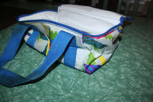 NEW Colourful Insulated lunch bag. zips with double straps. Kitchener / Waterloo Kitchener Area image 4