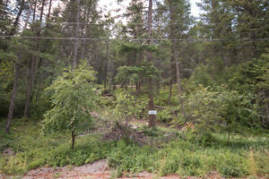 .5 Acre Fintry Building Lot