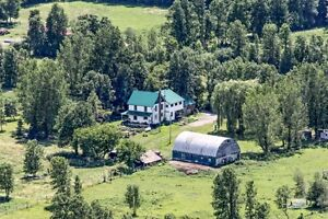 $469K Quiet 60 Acres hobby/horse farm solid Century 4 bedrooms