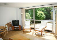 Sunny 3 Bedroom House & garden, kitchen , separate living room 4 mins Southfields