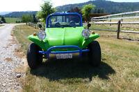 2011 Volkswagen Dune Buggy