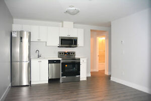 NEW large, spacious 2 bedroom suite in Fraser neighbourhood!