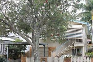 FAMILY HOME OFF EIGHTH AVENUE SANDGATE - BUY BEFORE XMAS Sandgate Brisbane North East Preview