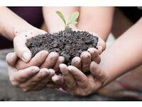 Free Nutritious Soil