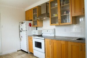 Large Fully Renovated 3 Bedroom Appartement