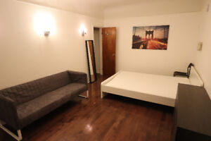 Furnished Bachelor - renovated apt - Trinity - Bellwoods
