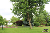 **Beautiful Ranch in Sought After South Windsor** Agents Welcome