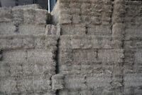 Coaldale, small timothy hay bales for sale!!