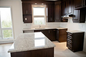LUXURIOUS CONDO FOR RENT - AYLMER - APRIL 1st