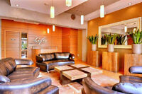Beautiful 1 bedroom Condo Fully furnished, CentreVille, Montreal
