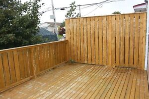 Great Starter Home With Off Street Parking! St. John's Newfoundland image 8