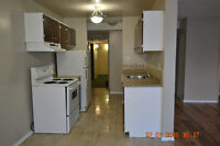Centrally located beautiful 1 BR-available April 1st