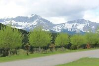 VACANT LOT AT RIVERVIEW VILLAGE IN CROWSNEST PASS