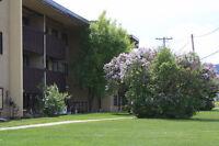 Williams Lake Rentals