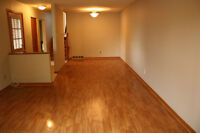 Spacious, beautiful & newly renovated 4 BedRoom Mult Level House