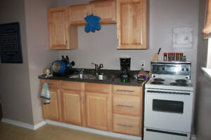 Newly Reno. 1-bed apart, 3nd floor  in a quiet residential area