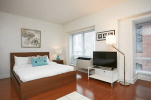 Beautiful Furnished Apartment - Old Montreal