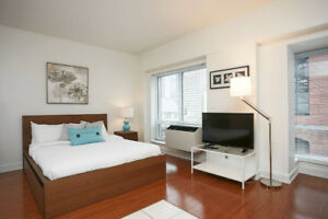 Urgent - Beautiful Furnished Apartment - Old Montreal