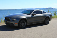 2013 Ford Mustang Summer is here