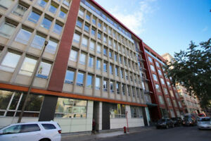 3 1/2 - DOWNTOWN/CENTRE-VILLE - FULLY FURNISHED / MEUBLÉ