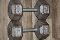 WOW - 2 haltères de 45 lbs / 2x45 lbs dumbell